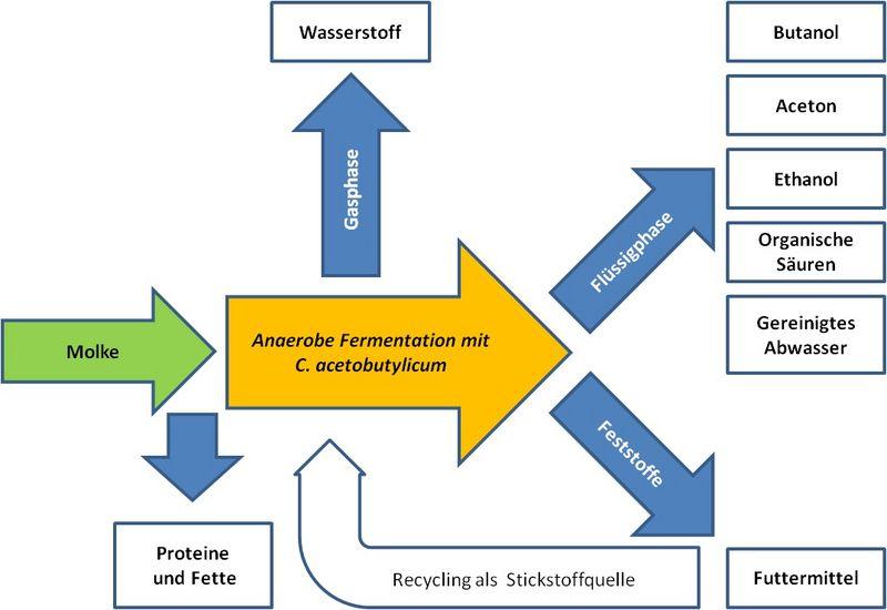 Plattformchemikalien